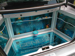 Ford Orion fish tank