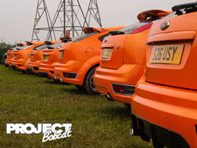 Row of orange Ford Focus ST's at Squires Cafe